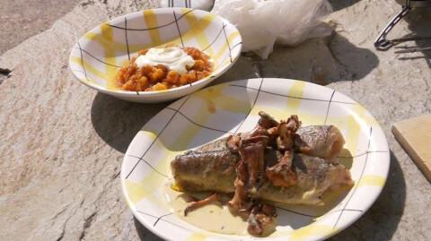 Spr�stekt fjell�rret servert med kremet sopp