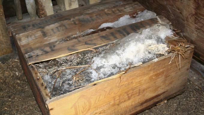 100 år gammel whisky funnet i Antarktis, skrekk og gru! thumbnail