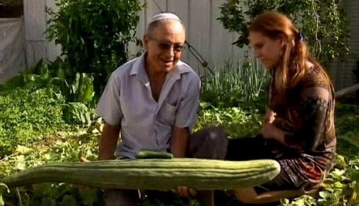 verdens største agurk